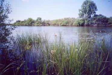 Малых рек в самарской области – около